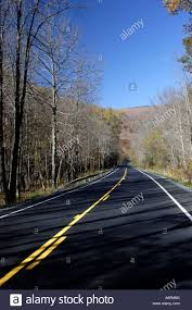 Paved Roadway And Bare Tees Stock Photo 11421855 Alamy