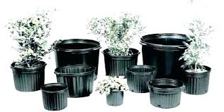 Nursery Container Sizes Chart Nursery Pot Sizes Davidhomedesign Co