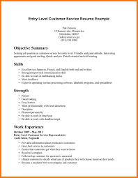 Example Of A Resume Summary 64 Images Executive Summary