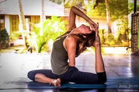 asana new yoga hall palm tree goa