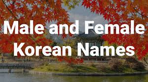 korean name is male or female