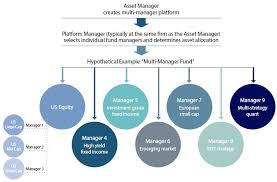 Master Feeder Structure Chart Multi Manager Platforms Operational Considerations For