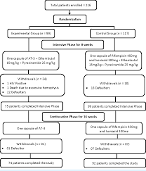 Phase 3 Clinical Trial Flow Chart Figure 1 From A Randomized Controlled Phase Iii Clinical