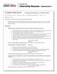 Resume For Federal Government Jobs Example Sample Resume For Government Employment Elegant Inspirational 17