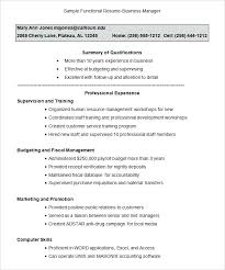 Combination Resume Template Free Delectable Combined Resume Template Functional Free Samples Examples Format