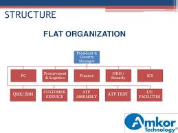 Flat Organisational Structure Flat