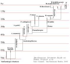 Human Genetics Chart Genetic Distance And Language