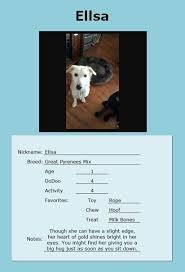 Ellsa Pet Info Source