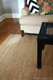 chenille jute basketweave rug children and natural area rugs reviews