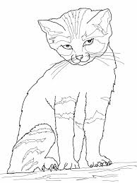Line Drawings Cat Printable Coloring Pages Fresh At Interior