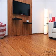 Furniture:Commercial Vinyl Flooring Engineered Timber Flooring Laminate  Flooring Reviews Vinyl Kitchen Flooring Cheap Laminate