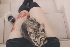 Tapety Milovat Nebe Ponožky Tetování Fotoaparát Káva Slunce