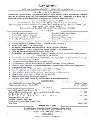 Travel Agent Job Description Resume Template Sample