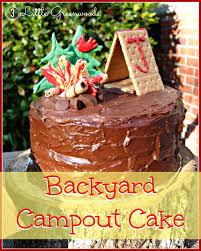 Backyard Campout Birthday Cake 3 Little Greenwoods