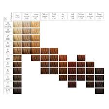 Hair Cellophane Color Charts Sebastian Cellophanes Step By Step Behindthechair Com