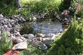 Small Picture Backyard Fish Pond Waterfall Koi Water Garden Waterscapes Waterl