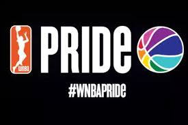 Image result for sexual orientation in the WNBA