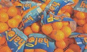halo mandarin oranges nutrition label plush fruit calories and calories what calories and candy looks to