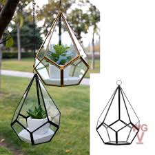 geometric glass terrarium planter undecahedron tear drop shape 8 inches tall droplet shape