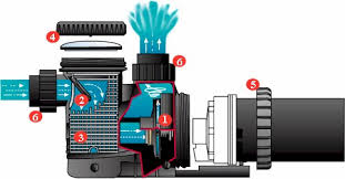 pool pump repair and troubleshooting information for swimming pool pump motor graphic