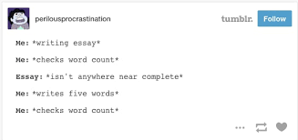 times the internet hilariously summed up essay writing 19 seriously why is it so impossible to resist checking