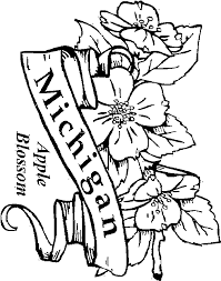 Small Picture Flower Coloring Pages Free Coloring Home