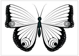 Butterfly Coloring Template Top Butterflies Pages Kids For Toddlers