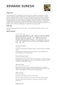 Enterprise Architect Sample Resume