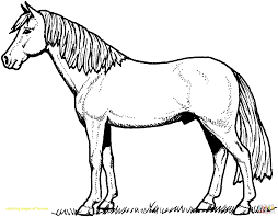 Printable Coloring Pages Horses With Horses Coloring Pages Free