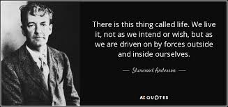 This Thing Called Life Quotes Awesome Sherwood Anderson Quote There Is This Thing Called Life We Live It
