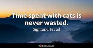 Freud Quotes Beauteous Time Spent With Cats Is Never Wasted Sigmund Freud BrainyQuote