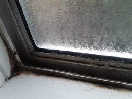 mold on window photo credit ask meta filter