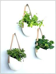 wall mounted plant holders wall plant pots wall mounted plant holder wall mounted plant holders of