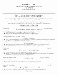 Personal Objectives For Resumes Magnificent 48 Elegant Entry Level Personal Banker Resume Objective Resume