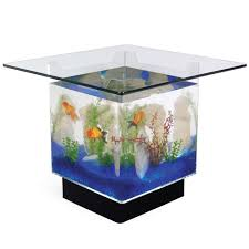 the 25 gallon fish tank coffee table the coolest coffee table you ll ever