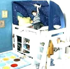 boys canopy bed – thehindus.co
