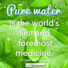 Water Quotes Enchanting Quotes About Water Uplifting Sayings And Proverbs About Hydration