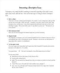 basic essay examples good resume objective examples for customer  basic