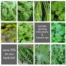 garden seed. Chef\u0027s Herb Garden Seed Kit S