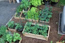 box garden. Simple Garden The Garden Flourishes In These Simple Containers Intended Box Garden E