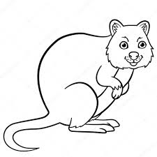 coloring pages cute. Exellent Coloring Coloring Pages Little Cute Quokka Stands And Smiles U2014 Vektor Av Yamayka With Pages Cute I