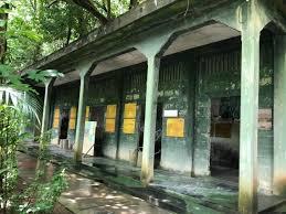 5 must visit y places in penang