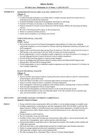 Financial Analyst Job Description Resume Financial Analyst Analyst Resume Samples Velvet Jobs 100