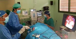 Resultado de imagen para adrenalectomía laparoscópica