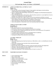 Laundry Assistant Sample Resume Laundry Assistant Resume Samples Velvet Jobs 1
