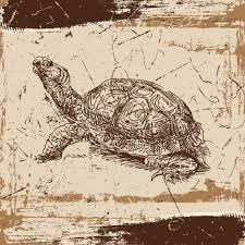 gd00004a turtle wall art on sea turtle canvas wall art with sea turtle canvas wall art 36 36 trendy wall squares