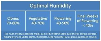 Ideal Humidity Level Estampam Co