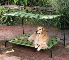 improvements cot style outdoor dog beds with canopies