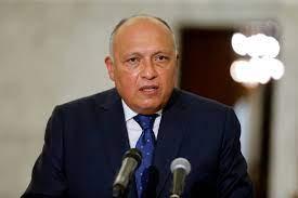 وزير الخارجية المصري: سنعرب لأعضاء مجلس الأمن عن عدم ارتياحنا لتجاهل إدانة  الملء الثاني لسد النهضة - RT Arabic