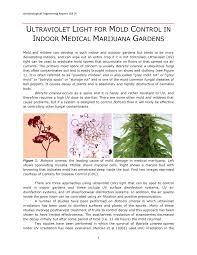 Uv Light To Kill Powdery Mildew Pdf Uv Light For Mold Control In Indoor Medical Marijuana